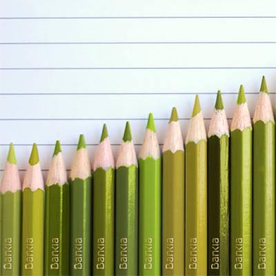 Resultados 2013 Bankia FTO Facebook Bankia