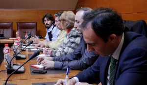 acciones de Bankia, demanda colectiva