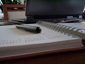 particulares-auditorias-gowex 2