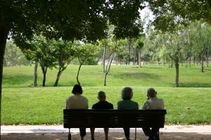 Los afectados por la compra de cuotas participativas de la CAM no cesan en su lucha FUENTE commons.wikimedia.org